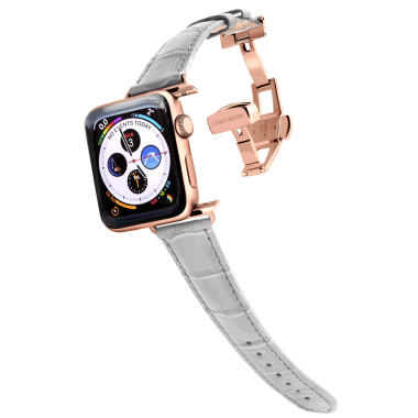apple_watch_band_main_1_womens_cs_misty_gray_gold.png